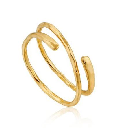 Picture for category Rings