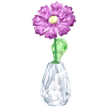 Flower Dreams - Gerbera
