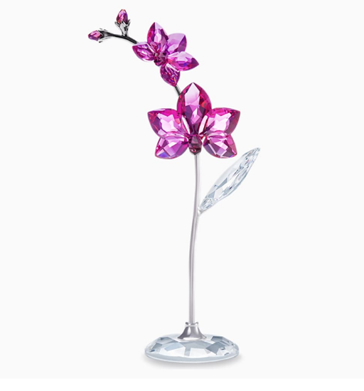 Orchid- Flower Dreams Collection